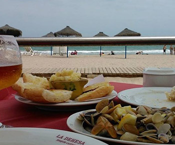 restaurante-la-dehesa-el-saler-joaquin-castello